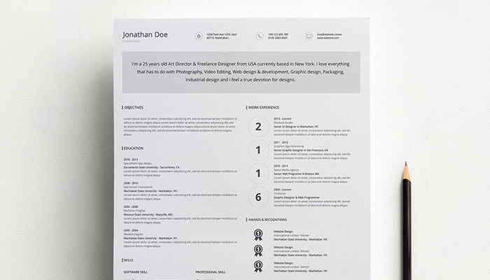 11 Iconographic Resume