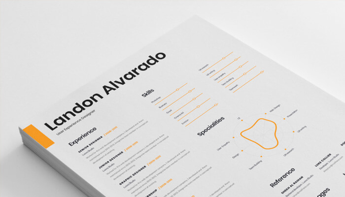 17 Resume Template for Designer
