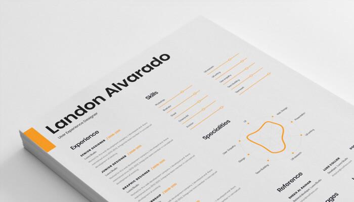 17 Resume Template for Designer
