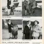 19 anuncios reales de la era Mad Men Lufthansa
