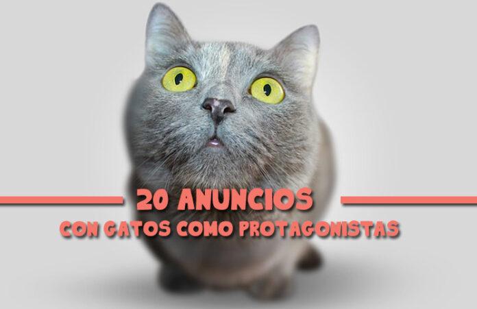 20-anuncios-con-gatos-como-protagonistas