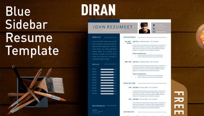3 Diran Resume Template Word