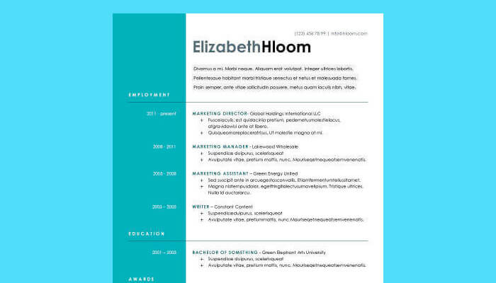 7 Blue Side Resume Template Word