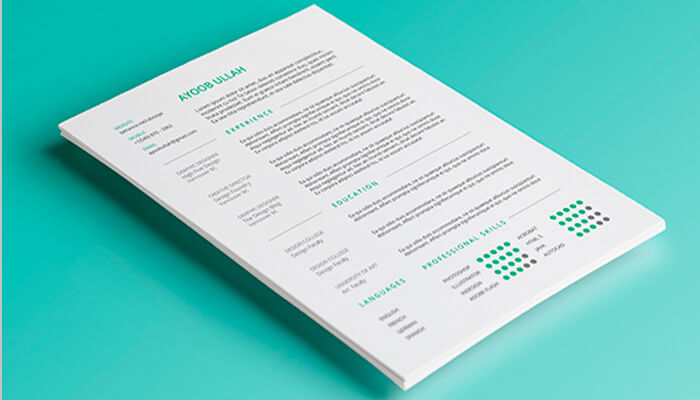 8 Resume Template