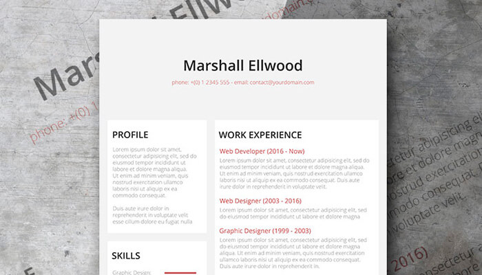 9 Desaturate Resume Template Word