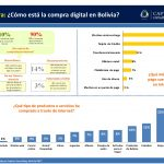 El consumidor Digital Boliviano 2017 (25)