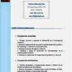 Modelo curriculum por competencias