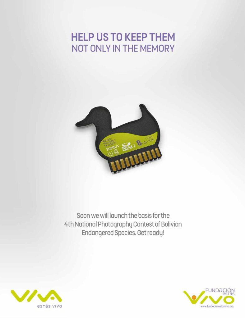 Publicidades de Bolivia Fundacion estas vivo