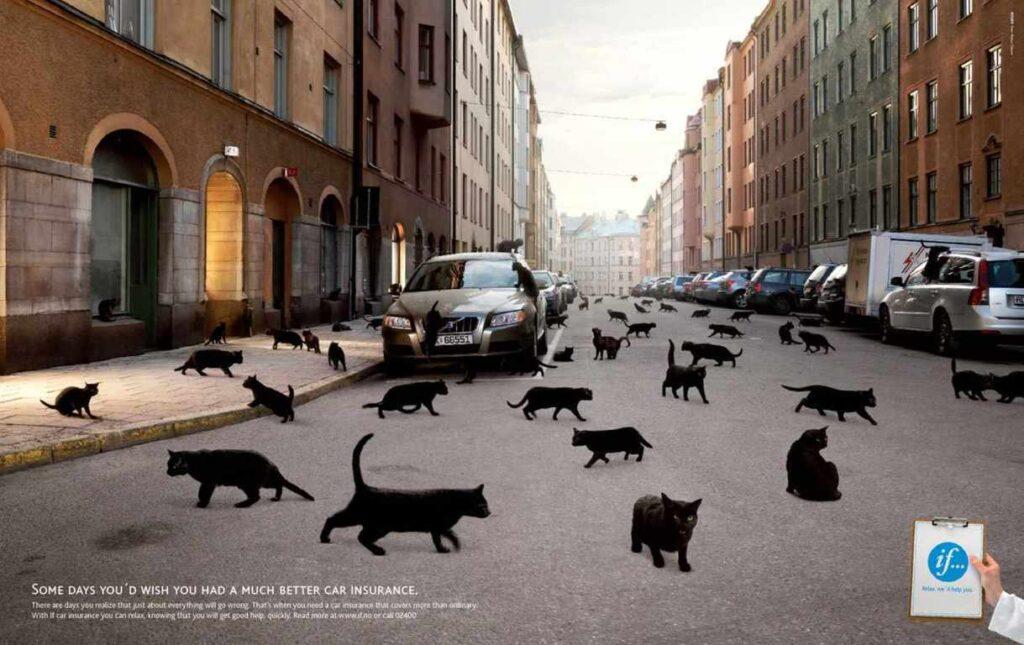 anuncios con gatos como protagonistas 10 - mclanfranconi