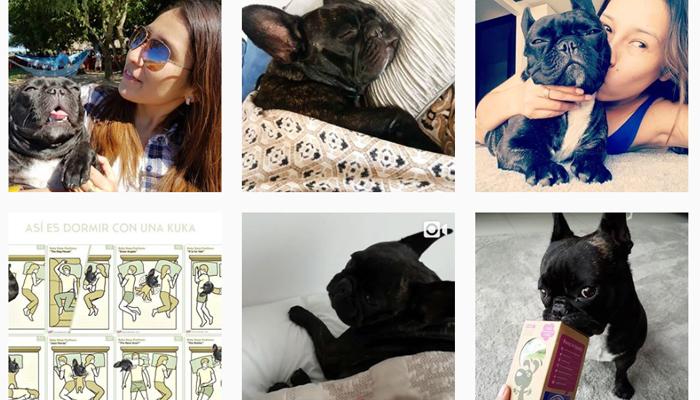 como crecer en instagram 2018 escoger nicho