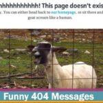 error 404 gracioso - mclanfranconi