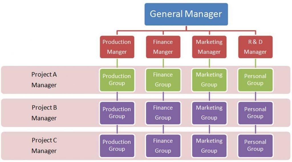 Organización Matriarcal
