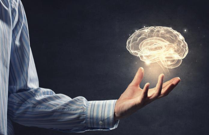 cuanto vale tu cerebro