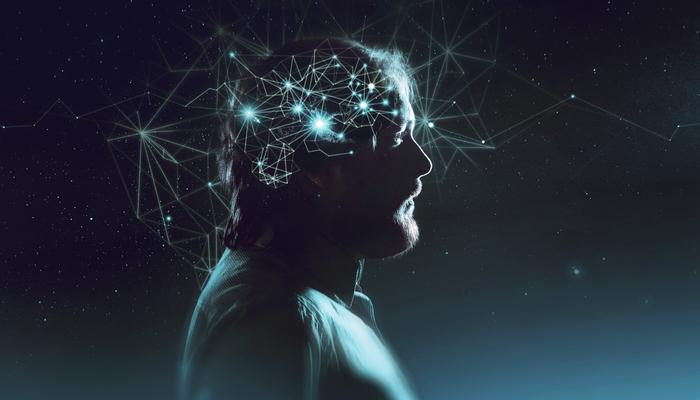 Cuanto vale tu cerebro 5